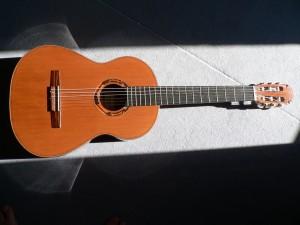 guitare Fouilleul C1